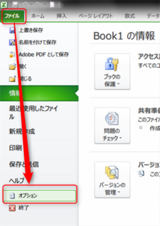 Excel2010開発タブの有効-1.png